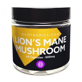 Lion's Mane Mushroom nootropic capsules 500mg